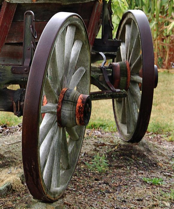Kathleen Stephens - Wheels