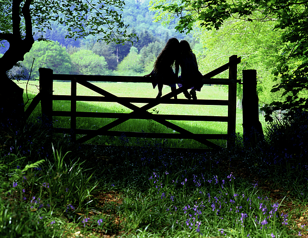 Maggie McCall - Best friends on a farm gate in Devon