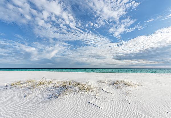 Bill Chambers - Winter Beach Day