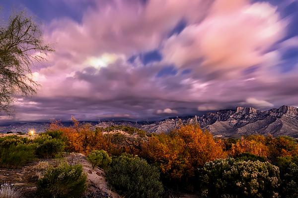Winter Colors 25 Photograph