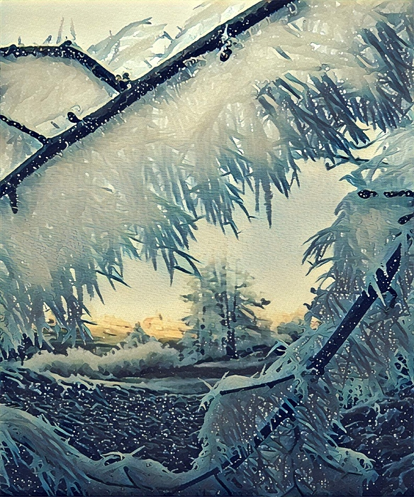 Colette V Hera Guggenheim - Winter Magic
