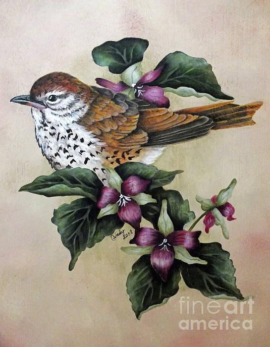 Cindy Treger - Wood Thrush Painting