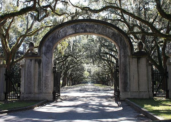 Carol Groenen - Wormsloe Plantation Gate
