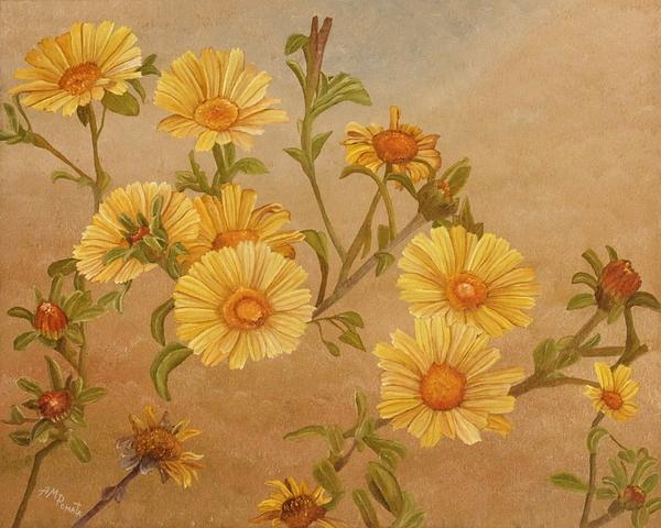 Angeles M Pomata - Yellow Daisies