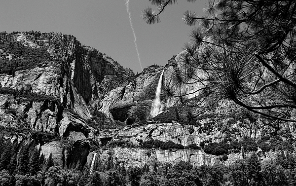 Judy Vincent - Yosemite Falls Black and White