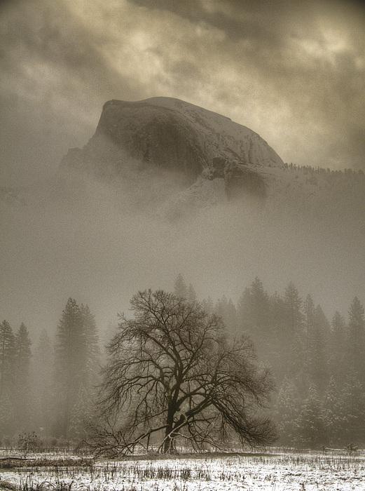 Connie Cooper-Edwards - Yosemite in the Winter