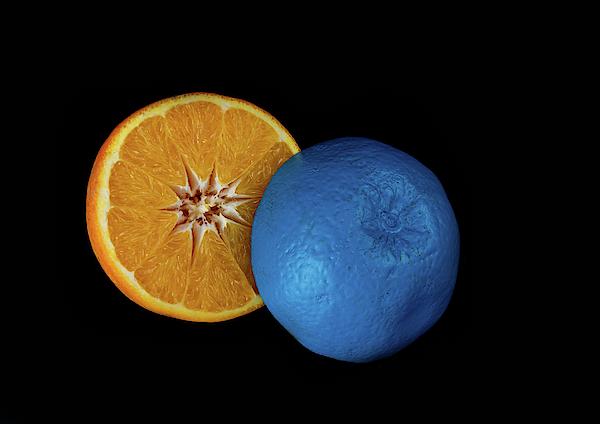 Michalakis Ppalis - Slices of  blue and orange fresh Citrus orange fruit