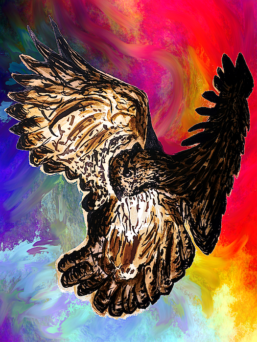 Abstract Angel Artist Stephen K - Owl in flight