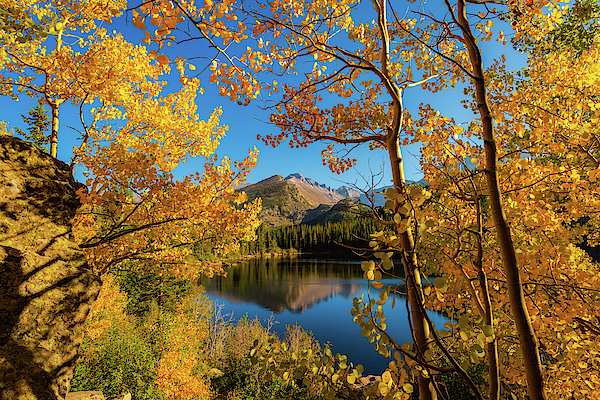 Gary Kochel - A Window Through Autumn
