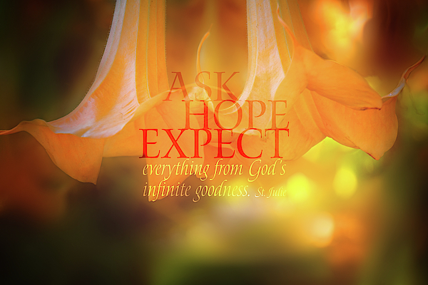 Terry Davis - Ask Hope Expect Flower