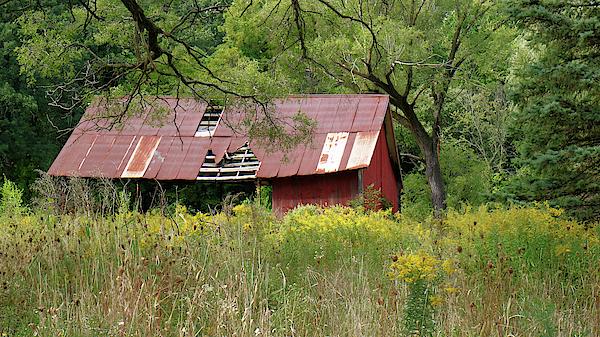 Scott Kingery - Barn on the Edge of the Woods