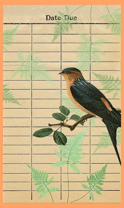 Bird dating site