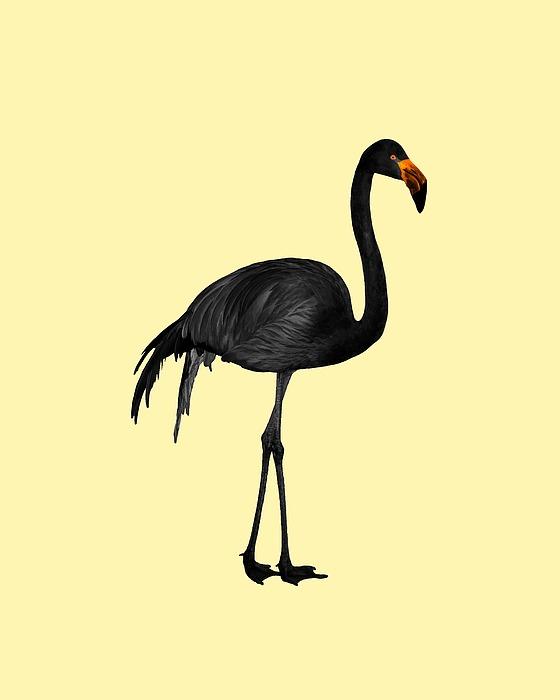 Black Flamingo 1 - Tropical Wall Decor - Flamingo Posters - Exotic Birds - Black, Modern, Minimal Mixed Media