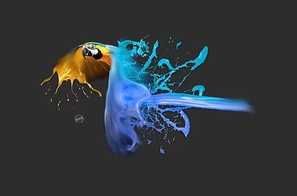 Blue And Yellow Macaw 01 Digital Art