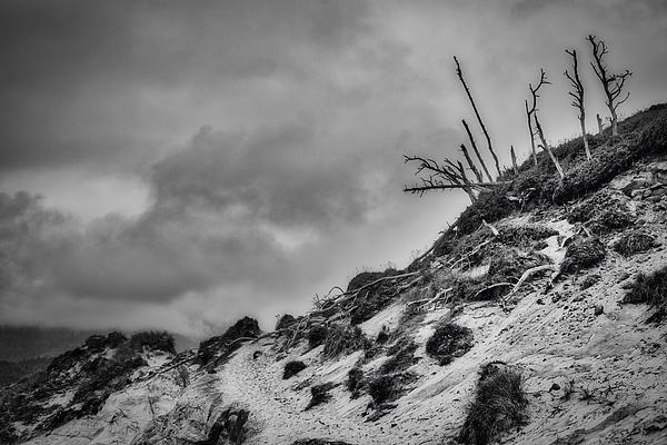 Stuart Litoff - Cape Kiwanda Sand Dune - Oregon