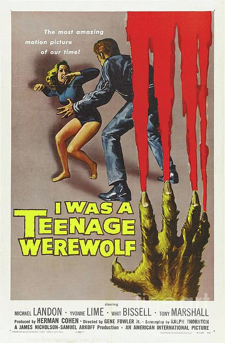 "I Was a Teenage Werewolf 14 x 11/"" Photo Print"