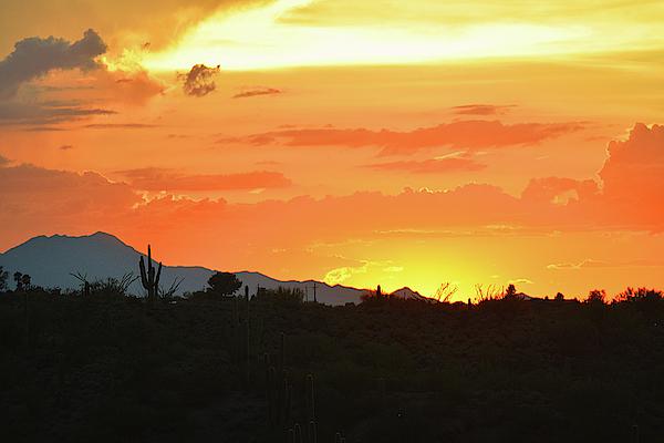 Chance Kafka - Classic Sonoran Sunset