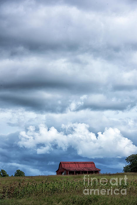 Nicki McManus - Cloud Drama