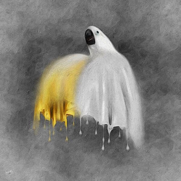 Cockatoo 01 Digital Art
