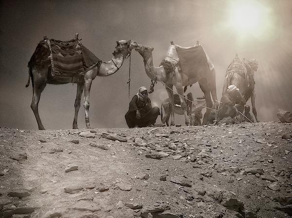 Jirka Svetlik - Desert evening