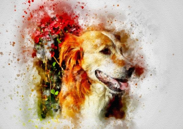 Gert J Rheeders - Drapercalia Catus 2 No. 9 - Dog - After The Style Of Gideon  John Ralph Draper. L B