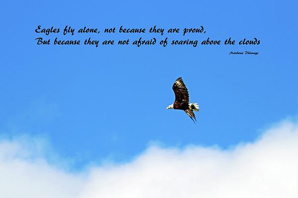 Debbie Oppermann - Eagles Fly Alone