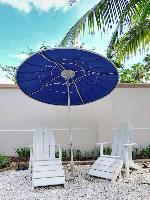 Portia Olaughlin - Endless Summer in the Garden