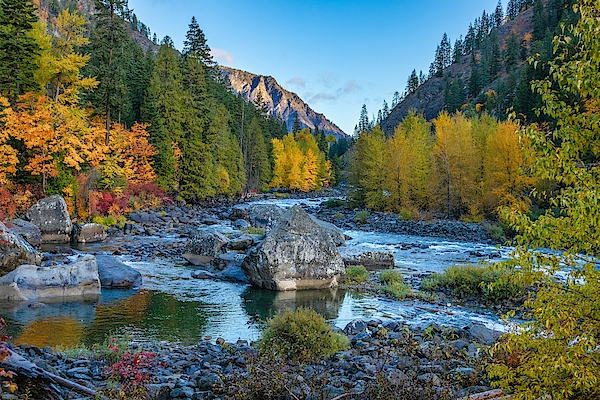 Lynn Hopwood - Fall on the river