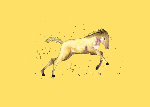 Foal Painting