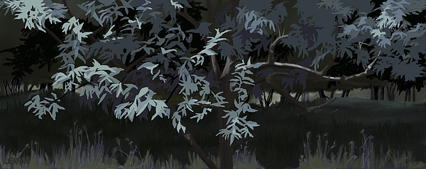 Jeanne Cutler - Foliage Study of Russian Olive Tree