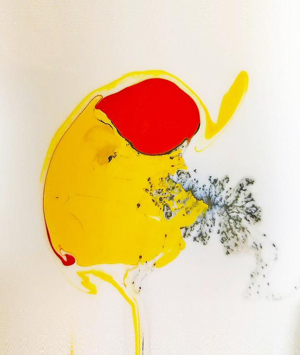 Nancy Haskins - Fried Egg Splot