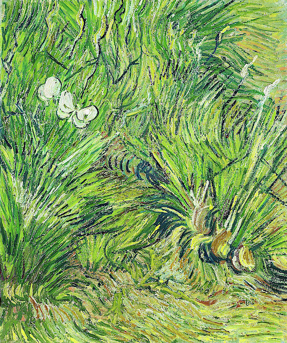Vincent van Gogh - Garden with butterflies - Digital Remastered Edition