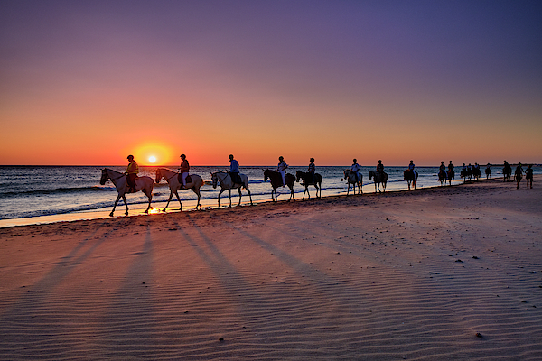 Guido Montanes Castillo - Horse ride at sunset. Barrosa beach
