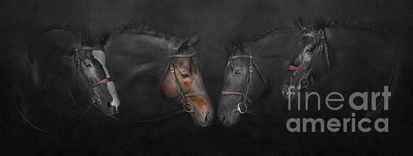 Horses 01 Digital Art