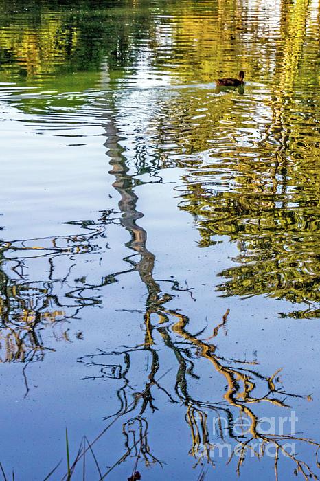 Kate Brown - Lakeside Reflections II