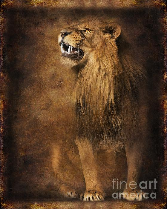 Lion 18 Digital Art
