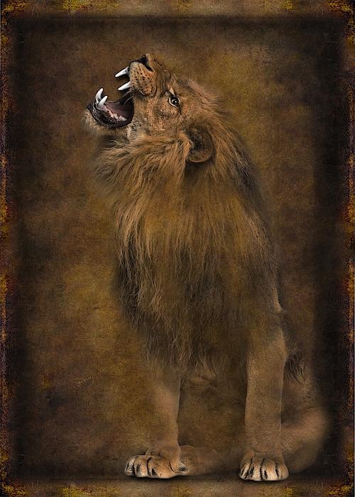 Lion Roar 01 Digital Art