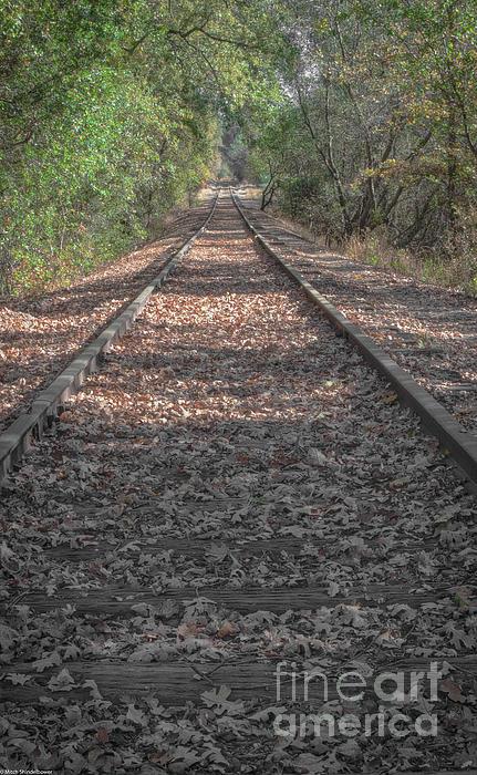 Mitch Shindelbower - Long Rails