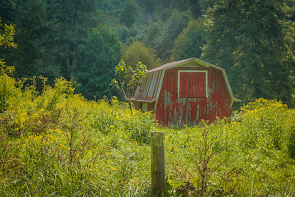 Lisa Bell - Memories Of The Barn