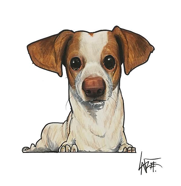 Mireles The Doggie Dog Dog Drawing