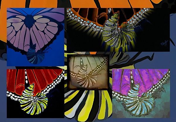 Joan Stratton - Monarch Butterfly Caterpillar Collage