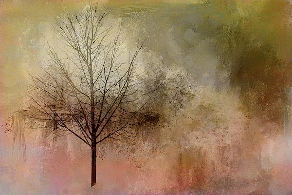 Terry Davis - Muted Wintery Tree