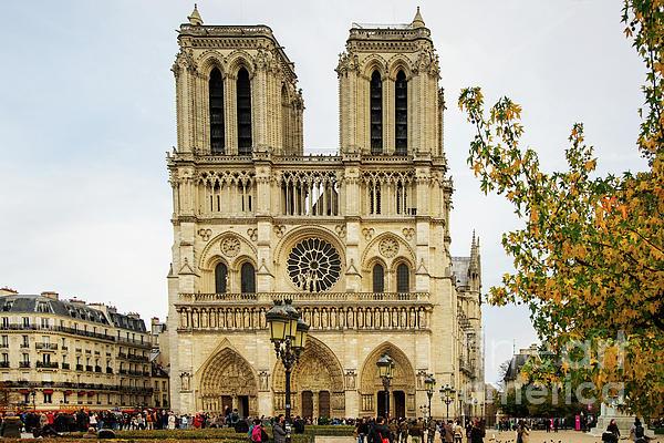 Wayne Moran - Notre Dame Cathedral Paris France