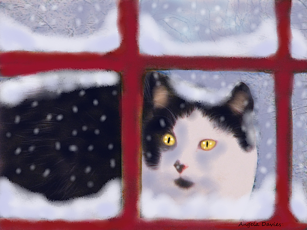 Angela Davies - Out In A Winter Storm
