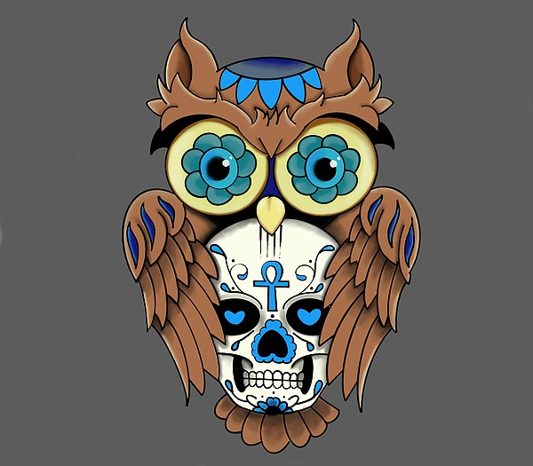 Owl And Skull Drawing