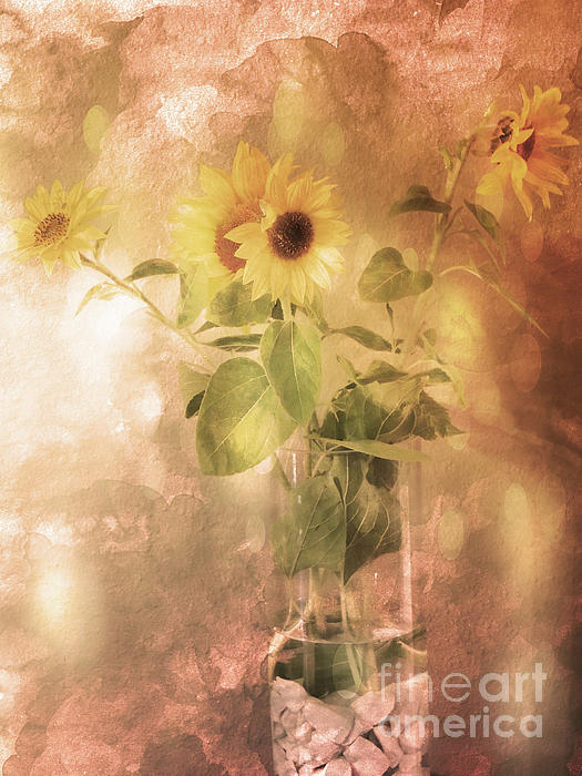 Beverly Guilliams - Preserving the Summer Favorite