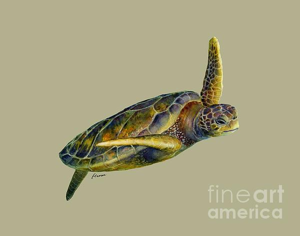 Sea Turtle 2 - Solid Background Painting