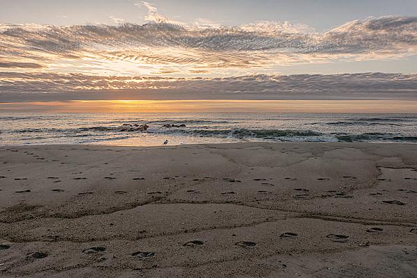 Sandi Kroll - Sunrise on the Jersey Shore