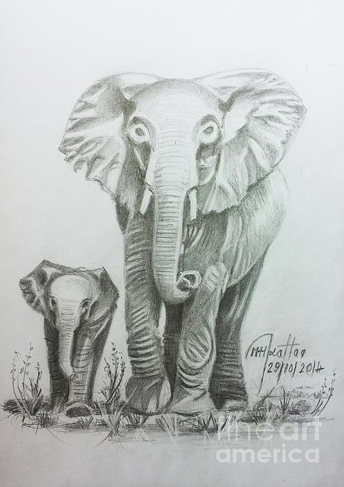 Mohammad Hayssam Kattaa - The Elephant