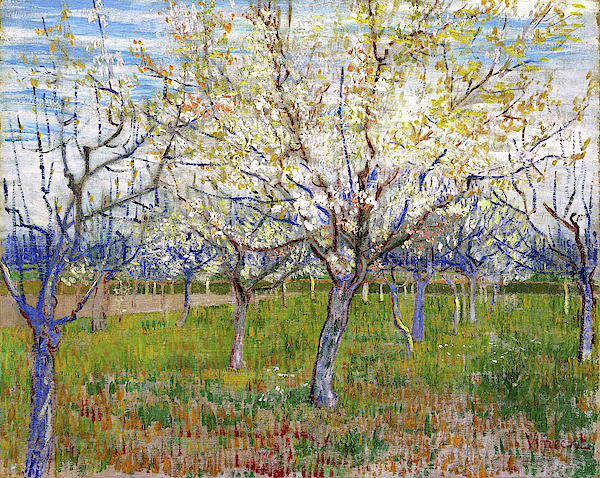 Vincent van Gogh - The Pink Orchard also Orchard with Blooming Apricot Trees - Digital Remastered Edition